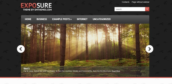 exposure-mejores-plantillas-wordpress-gratis